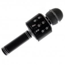 Microfon WS-858