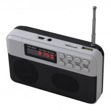 Radio WS-820